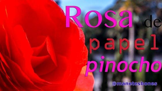 cómo hacer rosas XL de papel pinocho
